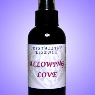 Allowing Love Vibrational Spray 4oz Bottle